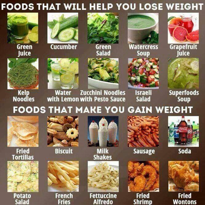 The 13 best foods for weight loss